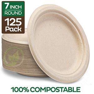 Comparativas De Platos Desechables Biodegradables Chedraui Tabla Con Los Diez Mejores
